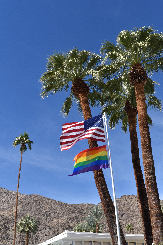 Palmen und Flaggen