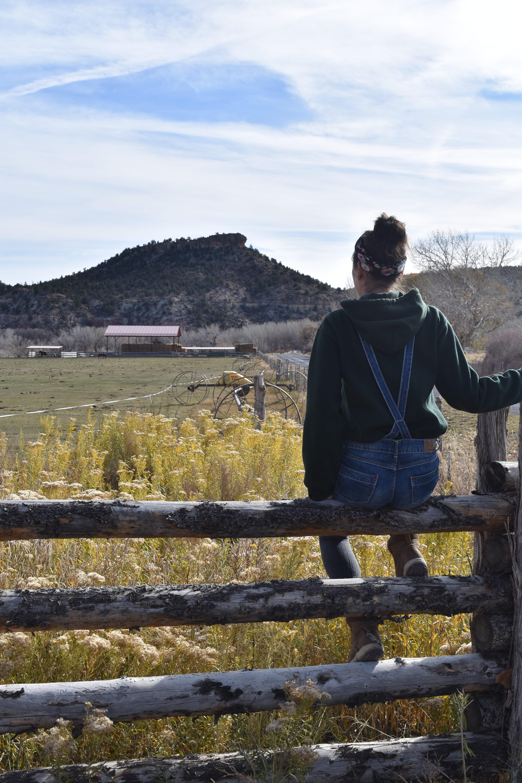 Sasy bei einer Ranch